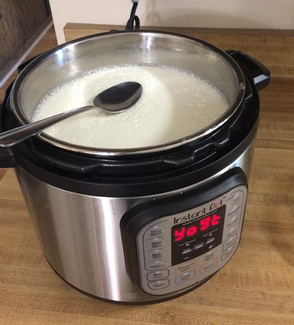 Instant Pot yogurt Cathe Swanson