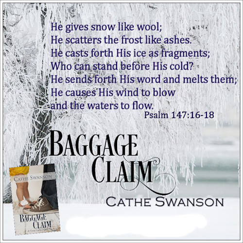 Baggage Claim by Cathe Swansons