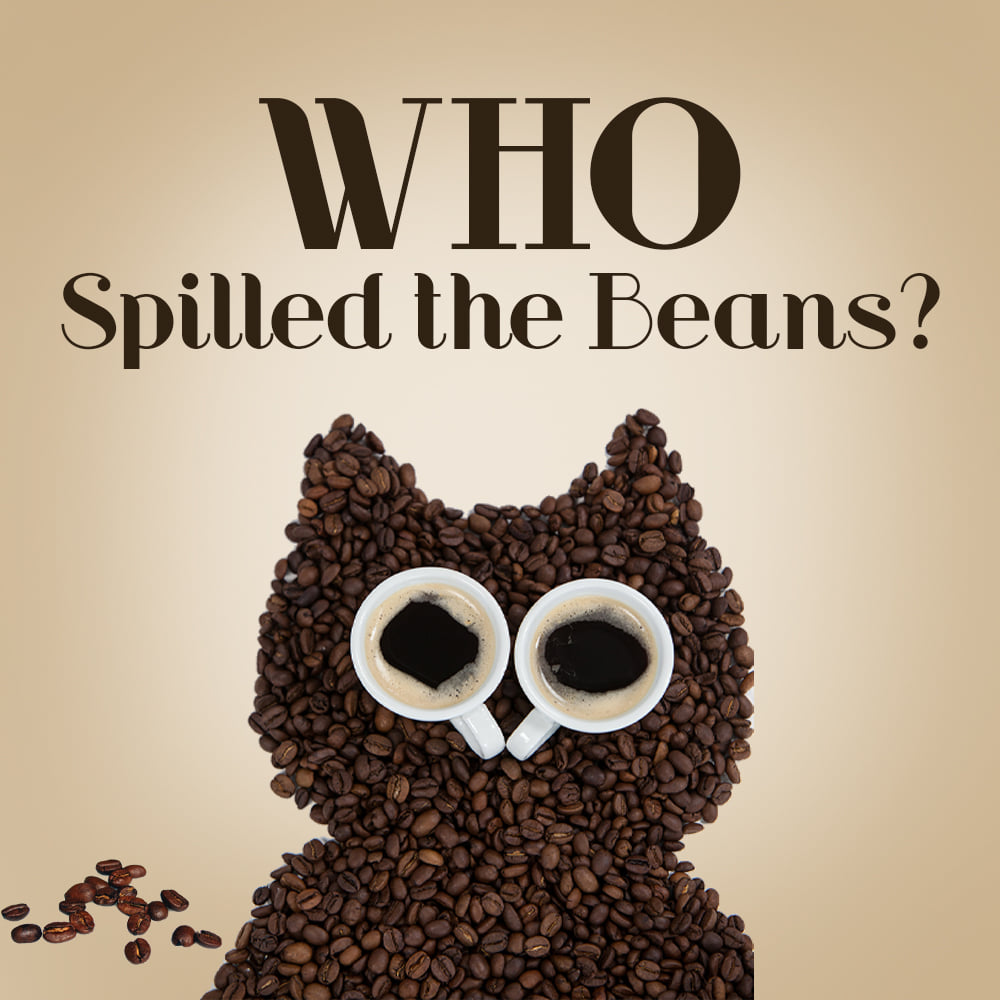 Who Spilled the Beans ~ Ever After Mysteries from Celebrate Lit